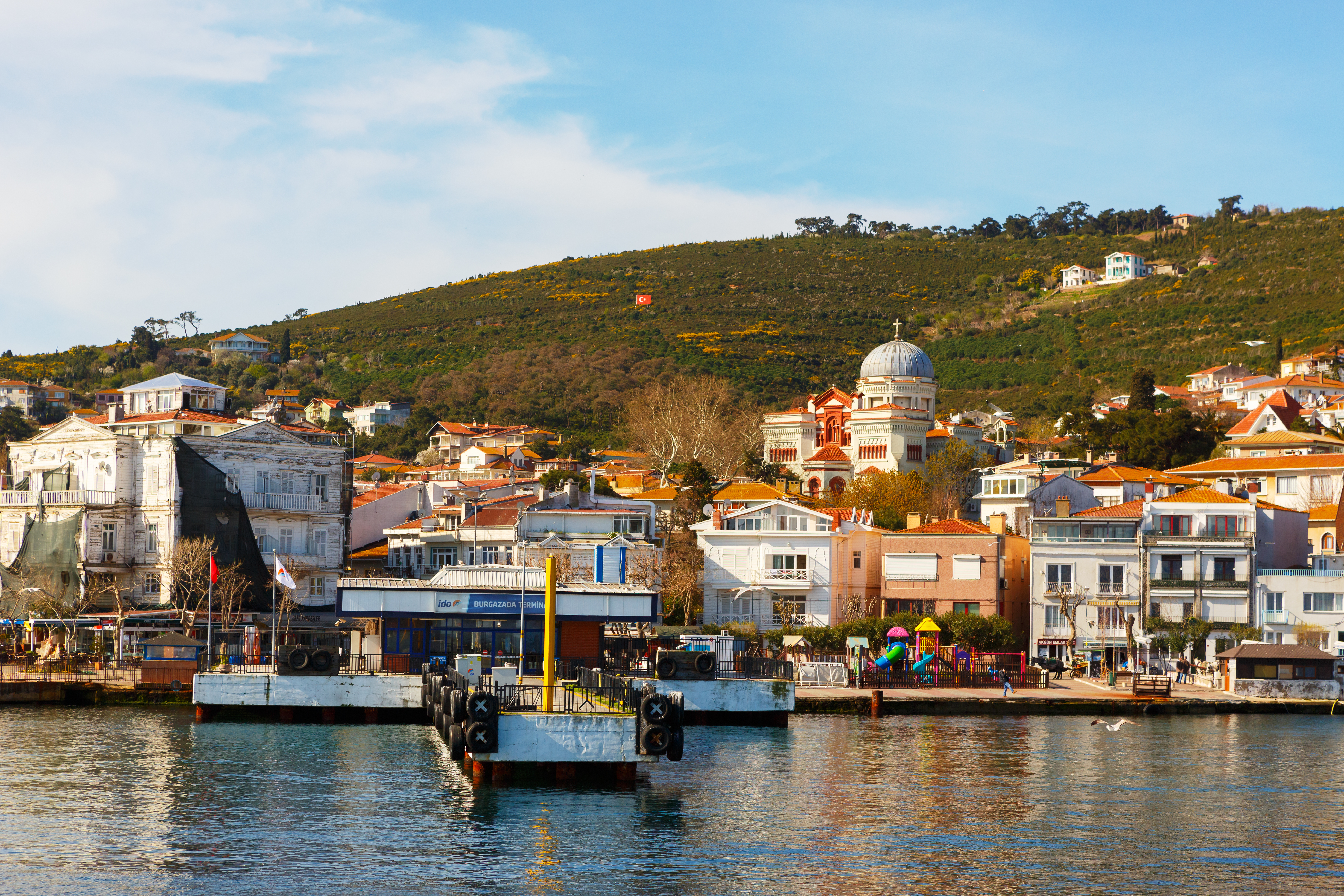 Yavuz Sariyildiz / Shutterstock.com